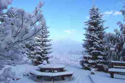 snow_back_deck.JPG