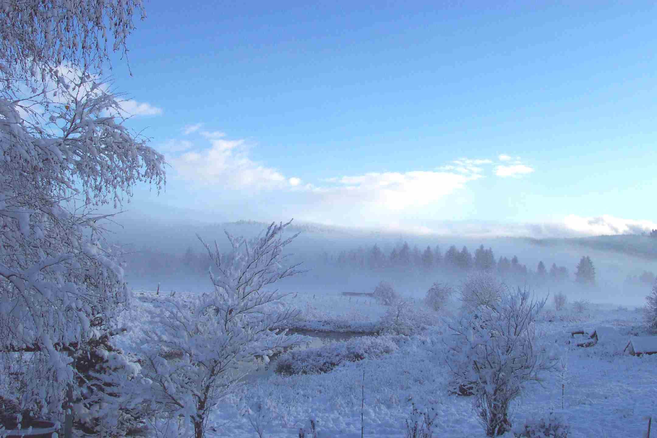 snow_fog.JPG