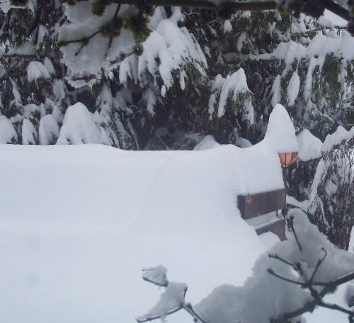 snow2_122208_sml.JPG