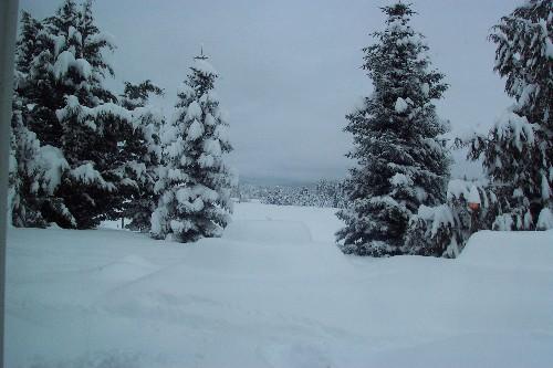 snow_122208_sml.jpg