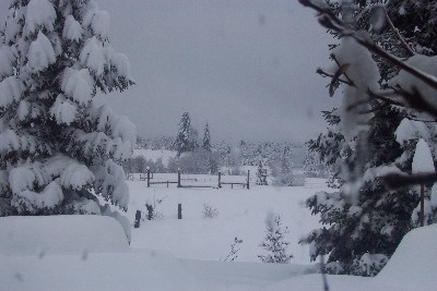 snow_long_view_sml.JPG
